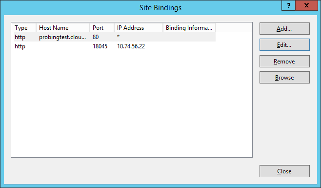 working IIS binding