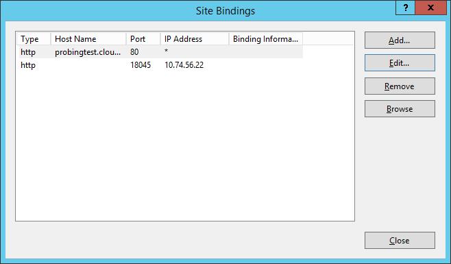 working IIS binding