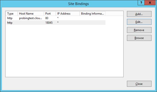 problematic IIS binding